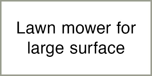 Large Surfaces