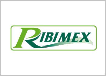Ribimex powertools