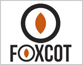 Foxcot high-top shoes